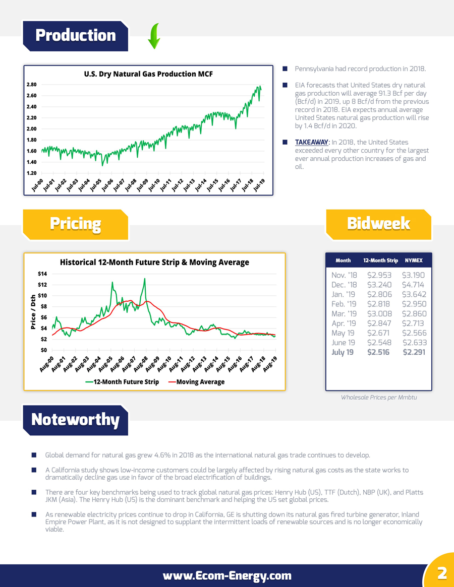 Ecom-Energy's July 2019 Market Update - Page 2