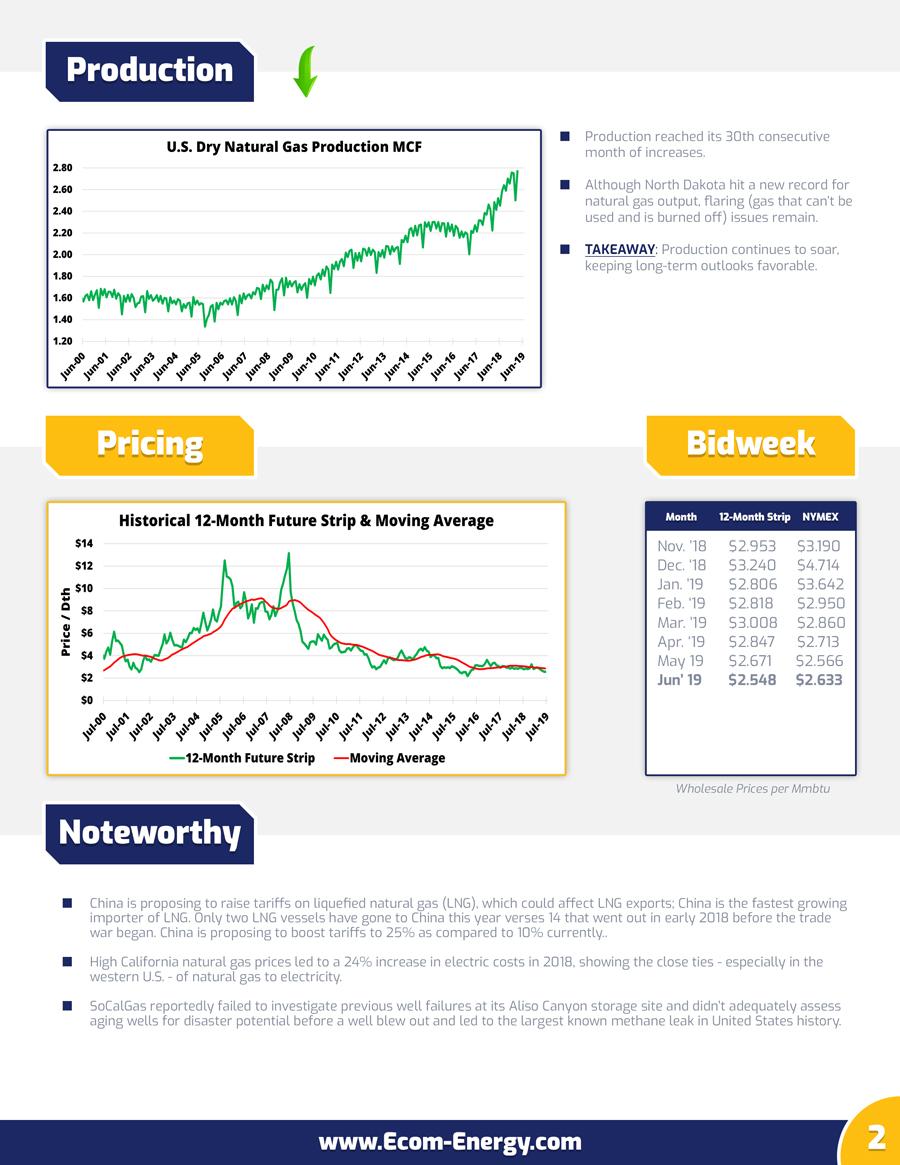 Ecom-Energy's June 2019 Market Update - Page 2