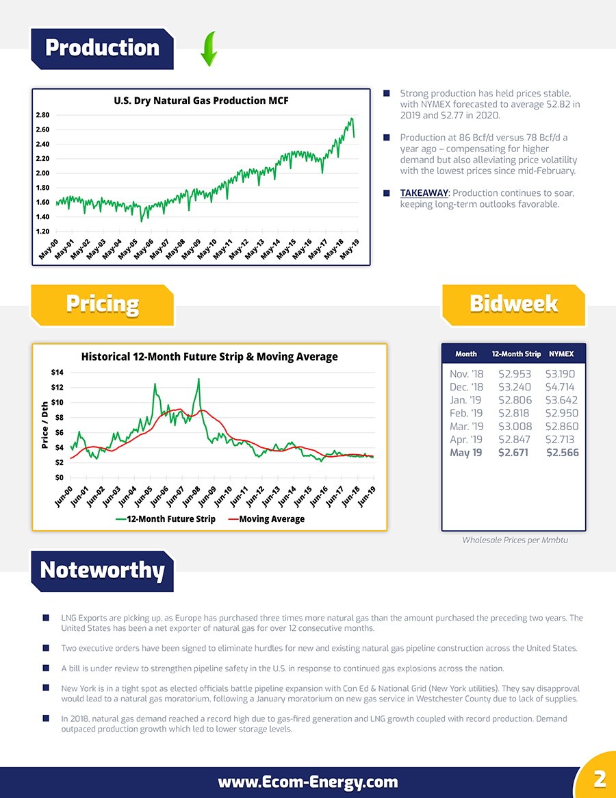 Ecom-Energy's May 2019 Market Update - Page 2